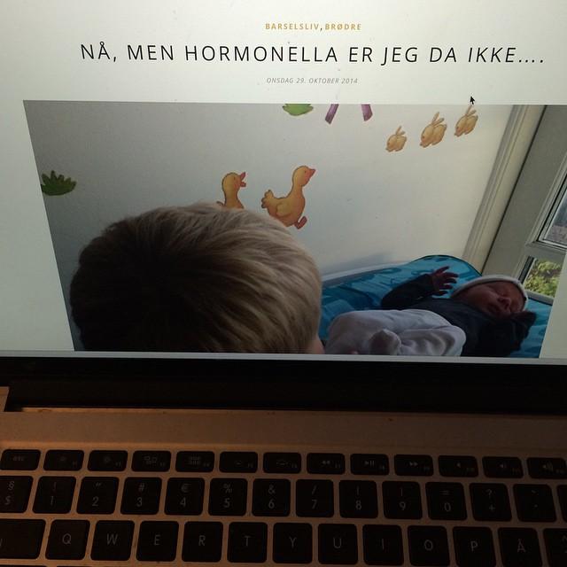 Blogger lidt om hormonerne .. #hormonella #copenhagendaily #blog