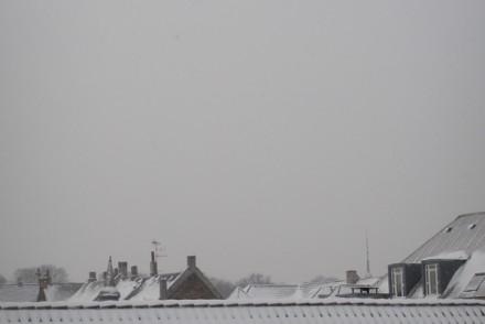 loerdag-sne