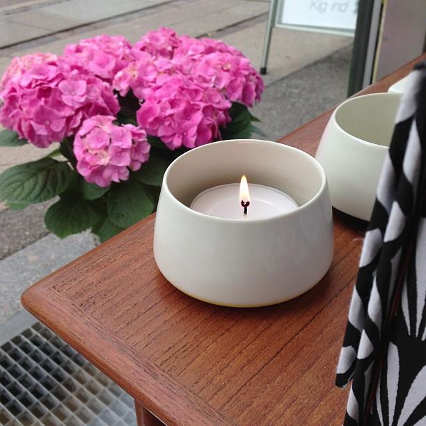 lys-hortensia